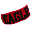Cover Image for EAGLES HEADBAND