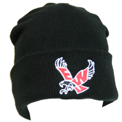 Image For FLYYING EAGLE NORTH POLE ADULT BEANIE
