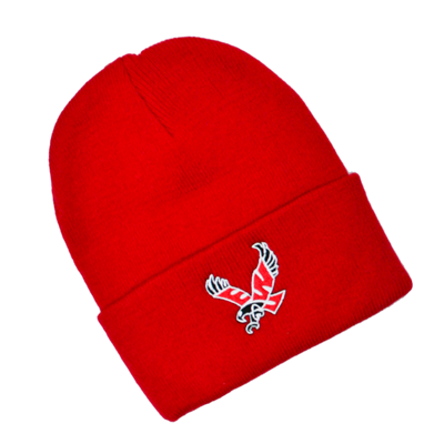 Image For NORTH POLE YOUTH BEANIE