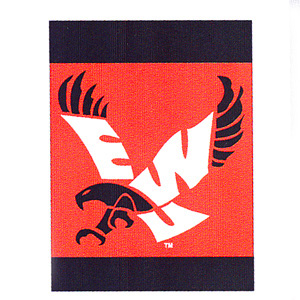 Image For EAGLES VERTICAL BANNER