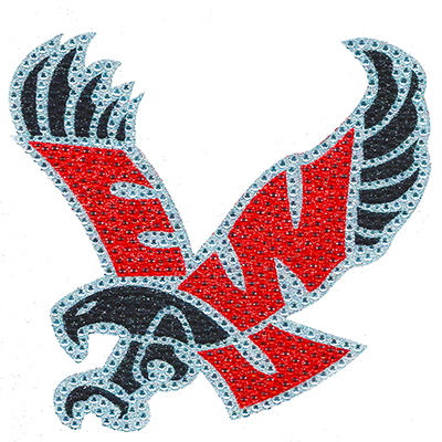 Image For FLYING EAGLE GLITTER DECAL
