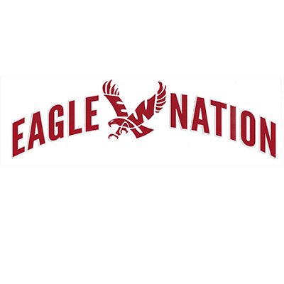 Image For EAGLE NATION DECAL