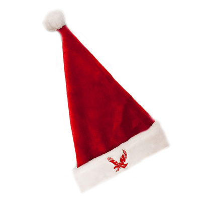 Image For FLYING EAGLE HOLIDAY HAT