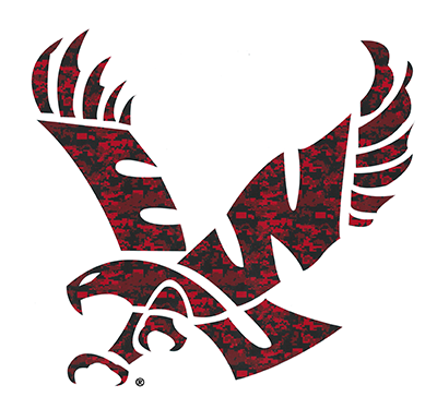 "Image For 10"" DIGI EAGLE DECAL"