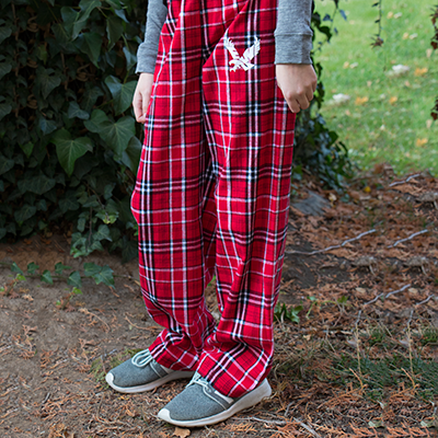 Image For YOUTH FLANNEL PANT