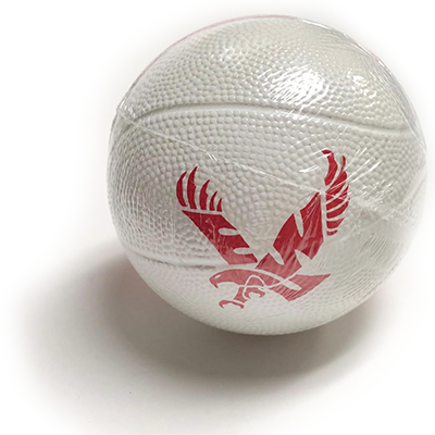 Cover Image For MINI BASKETBALL