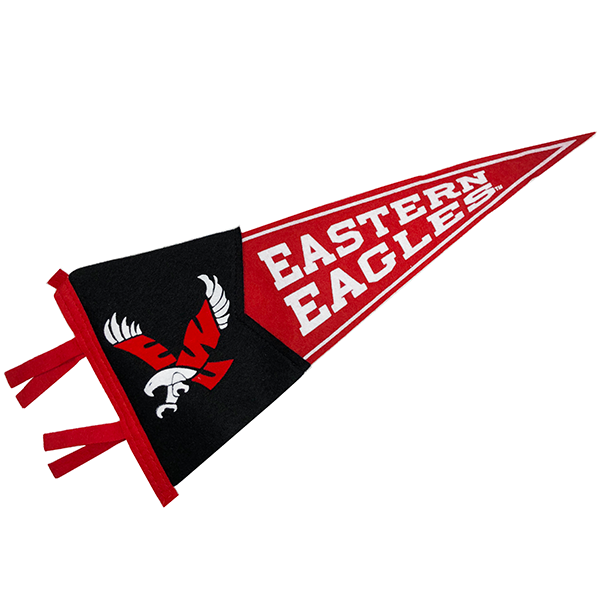 Image For SMALL EAGLE PENNANT