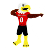 Cover Image for SWOOP BOBBLE HEAD