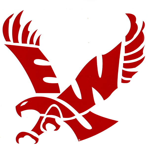 "Image For 10"" EAGLE DECAL"