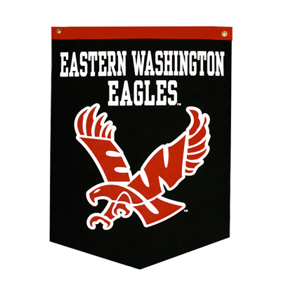 Image For FLYING EAGLE BANNER